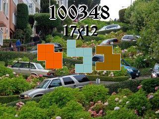 Rompecabezas полимино №100348