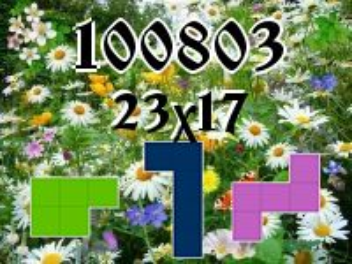 Rompecabezas полимино №100803