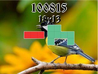 Rompecabezas полимино №100815