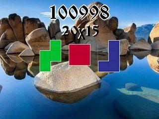 Rompecabezas полимино №100998