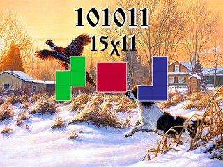Rompecabezas полимино №101011