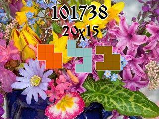 Rompecabezas полимино №101738