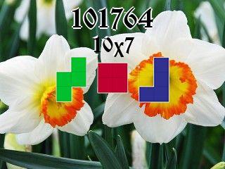 Rompecabezas полимино №101764
