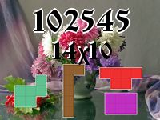 Rompecabezas полимино №102545