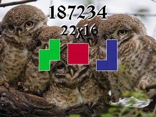 Rompecabezas полимино №187234