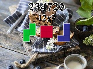 Rompecabezas полимино №234720