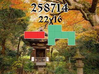 Rompecabezas полимино №258714