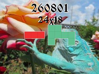Rompecabezas полимино №260801