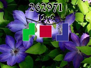 Rompecabezas полимино №262971