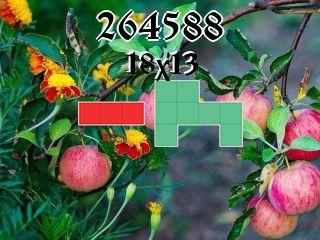 Rompecabezas полимино №264588