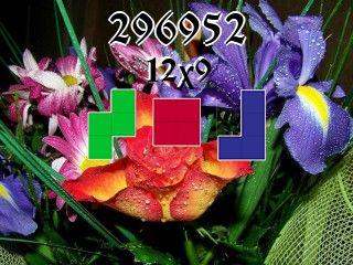 Rompecabezas полимино №296952