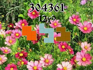Rompecabezas полимино №304361