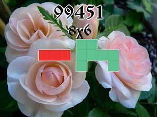 Rompecabezas полимино №99451