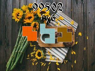 Rompecabezas полимино №99502