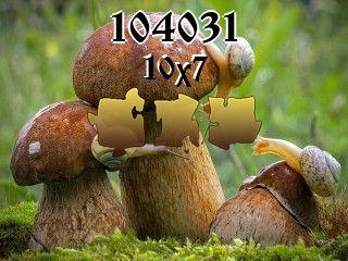 Rompecabezas №104031
