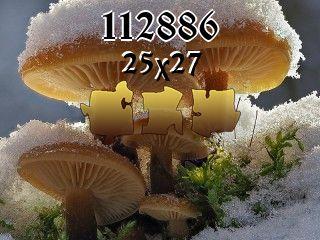 Rompecabezas №112886
