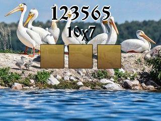 Rompecabezas №123565