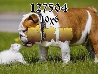 Rompecabezas №127504