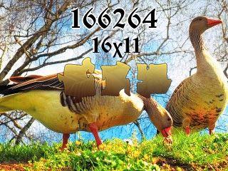 Rompecabezas №166264