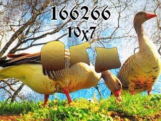 Rompecabezas №166266