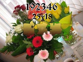 Rompecabezas №192346