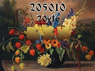 Rompecabezas №205010