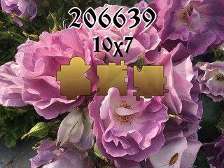 Rompecabezas №206639