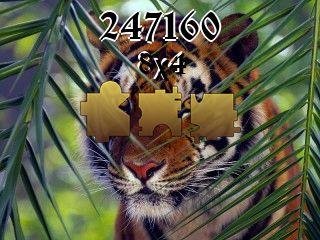 Rompecabezas №247160