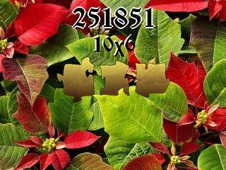 Rompecabezas №251851