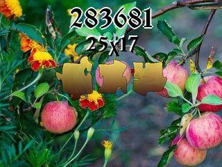 Rompecabezas №283681