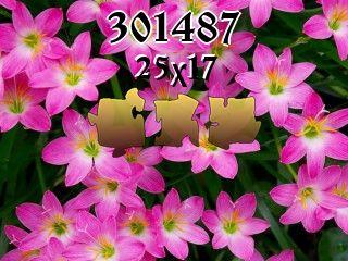 Rompecabezas №301487
