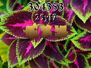 Rompecabezas №304353