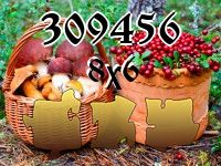 Rompecabezas №309456