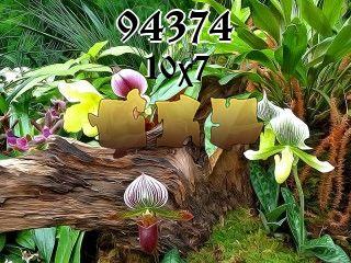 Rompecabezas №94374