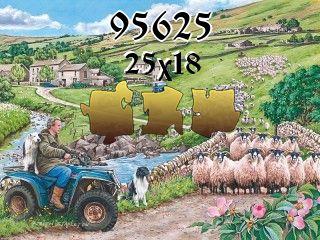 Rompecabezas №95625