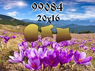 Rompecabezas №99084