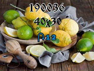 Rompecabezas перевертыш №190036