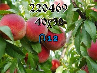 Rompecabezas перевертыш №220469