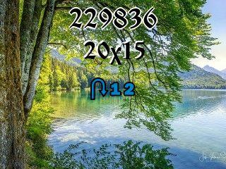 Rompecabezas перевертыш №229836