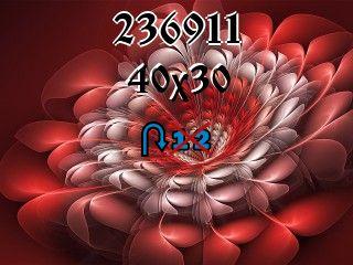 Rompecabezas перевертыш №236911
