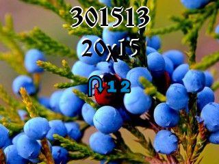 Rompecabezas перевертыш №301513