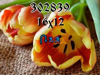 Rompecabezas перевертыш №302839