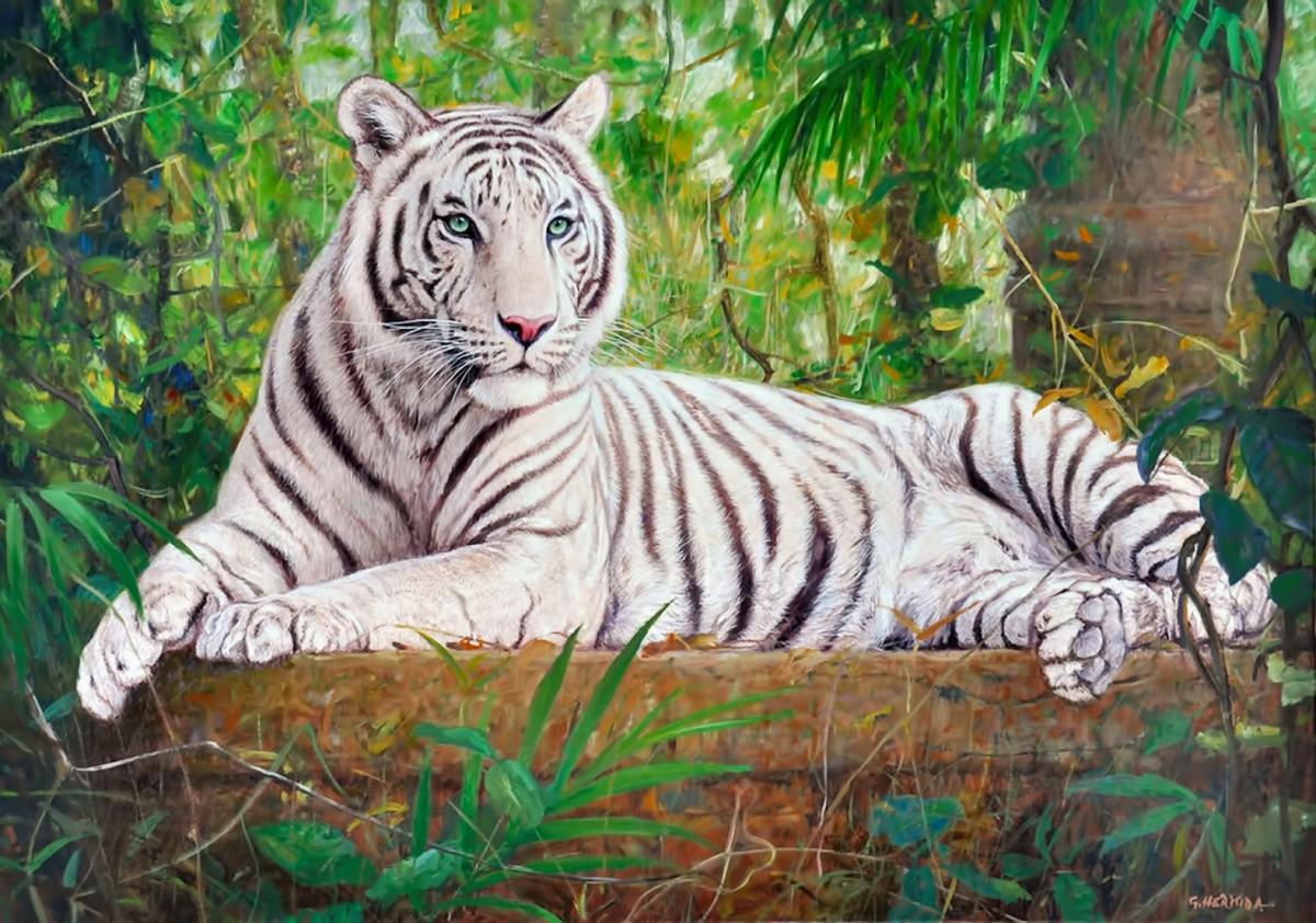 Rompecabezas Recoger rompecabezas en línea - White tiger
