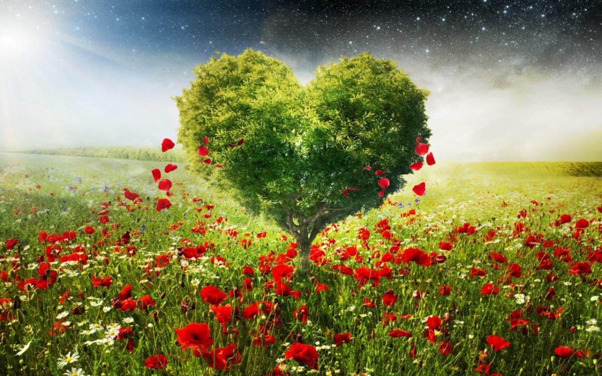 Rompecabezas Recoger rompecabezas en línea - Tree-heart