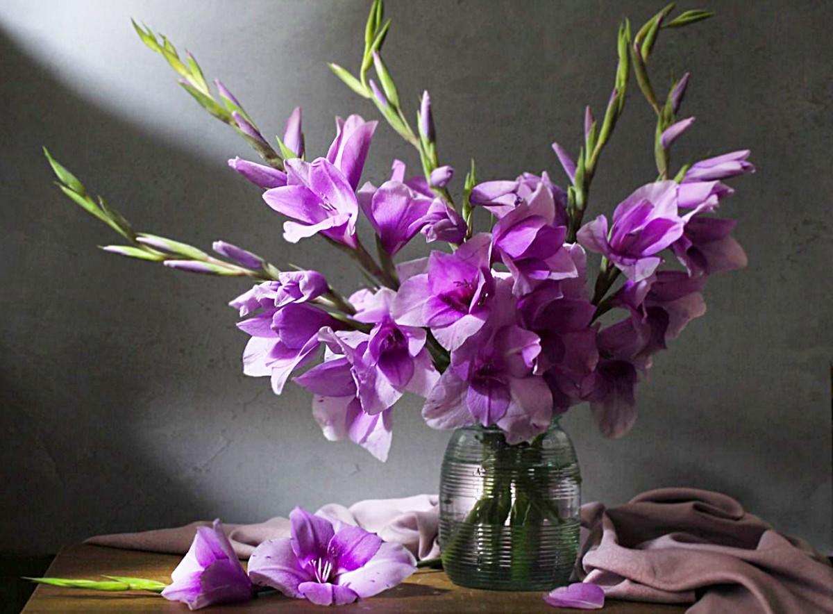 Rompecabezas Recoger rompecabezas en línea - Gladiolus