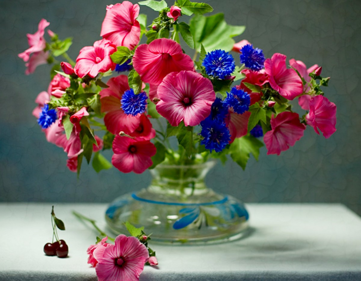 Rompecabezas Recoger rompecabezas en línea - Lavatera and cornflowers