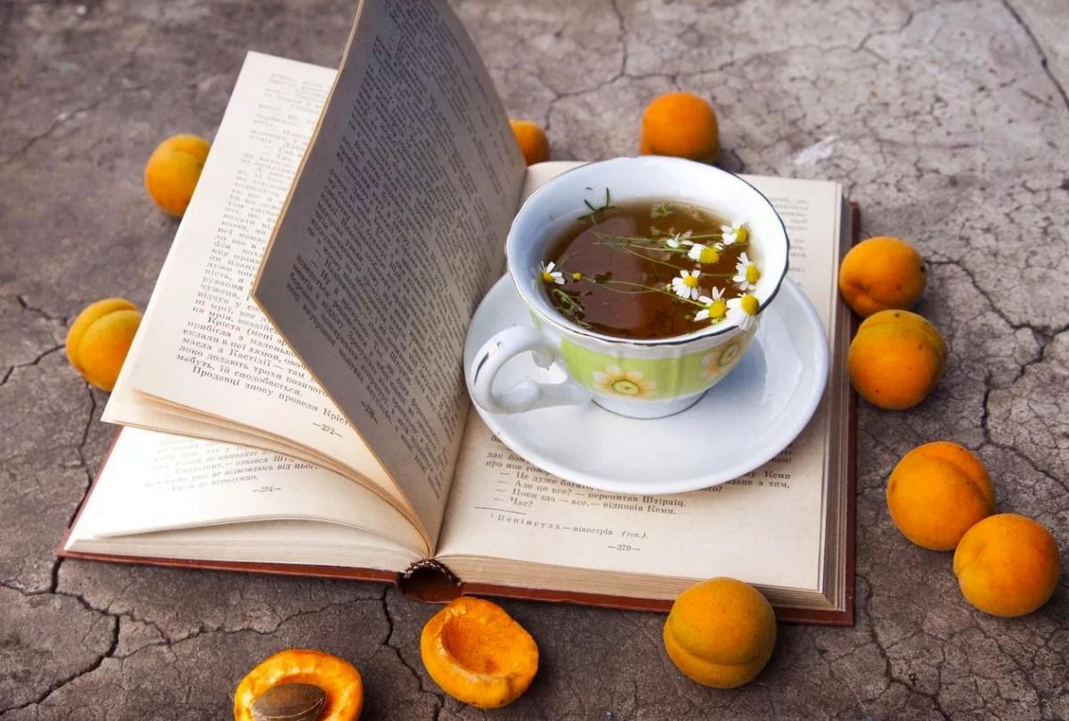 Rompecabezas Recoger rompecabezas en línea - Still life with a book