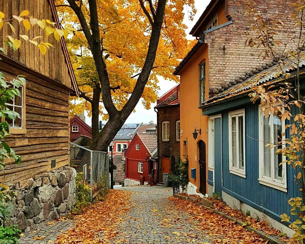 Rompecabezas Oslo Norway