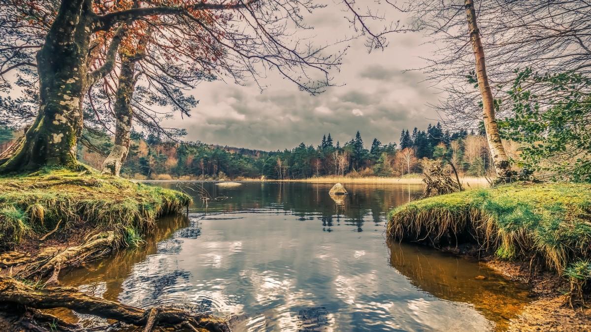 Rompecabezas Recoger rompecabezas en línea - Lake of the woods