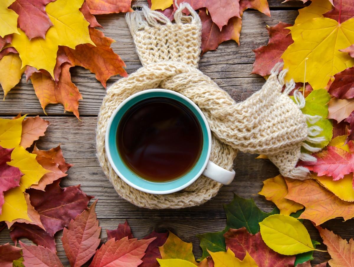 Rompecabezas Recoger rompecabezas en línea - Scarf for tea